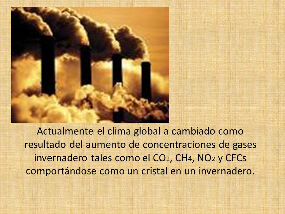 Actualmente el clima global a cambiado como resultado del aumento de concentraciones de gases invernadero tales como el CO2, CH4, NO2 y CFCs comportándose como un cristal en un invernadero.