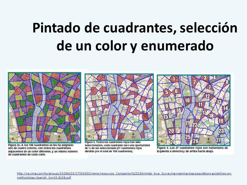 Pintado de cuadrantes, selección de un color y enumerado