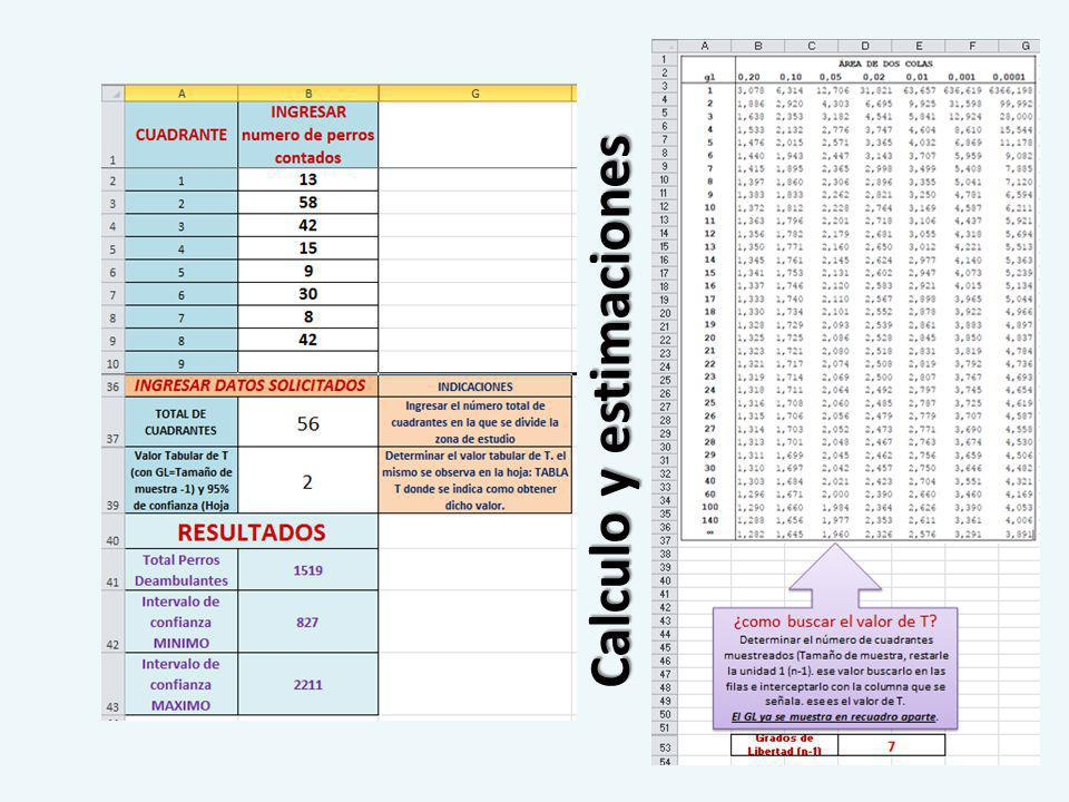 Calculo y estimaciones