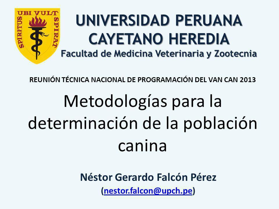 Néstor Gerardo Falcón Pérez (nestor.falcon@upch.pe)