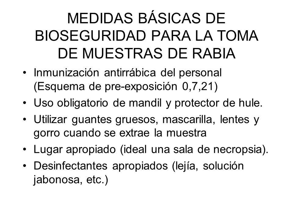 MEDIDAS BÁSICAS DE BIOSEGURIDAD PARA LA TOMA DE MUESTRAS DE RABIA