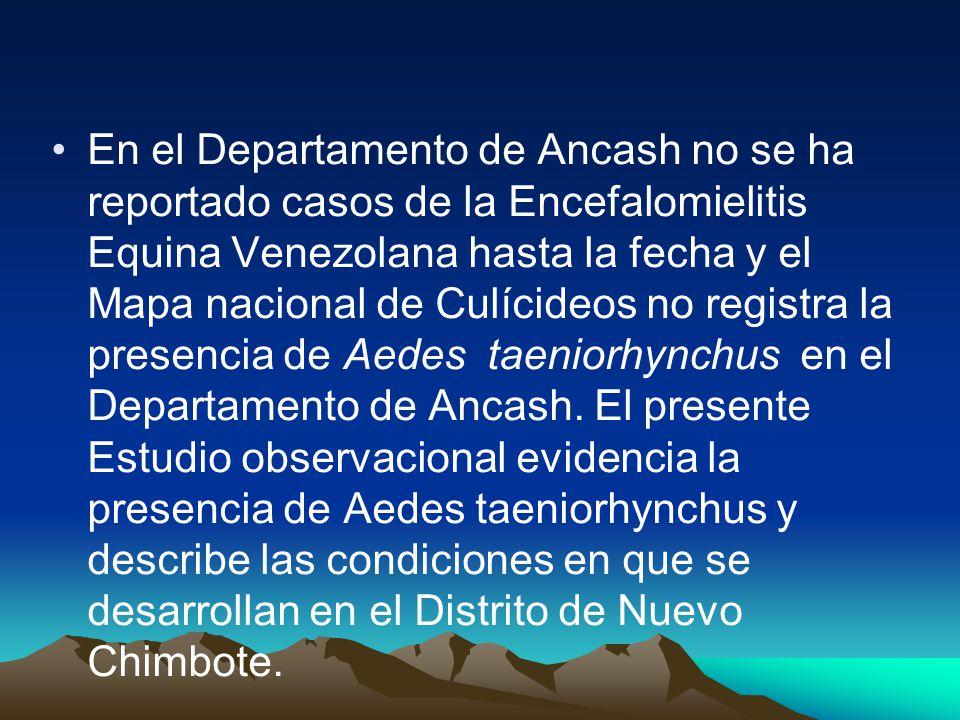 En el Departamento de Ancash no se ha reportado casos de la Encefalomielitis Equina Venezolana hasta la fecha y el Mapa nacional de Culícideos no registra la presencia de Aedes taeniorhynchus en el Departamento de Ancash.