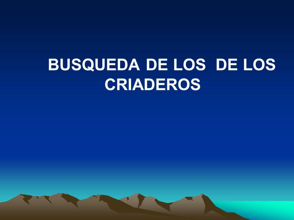 BUSQUEDA DE LOS DE LOS CRIADEROS