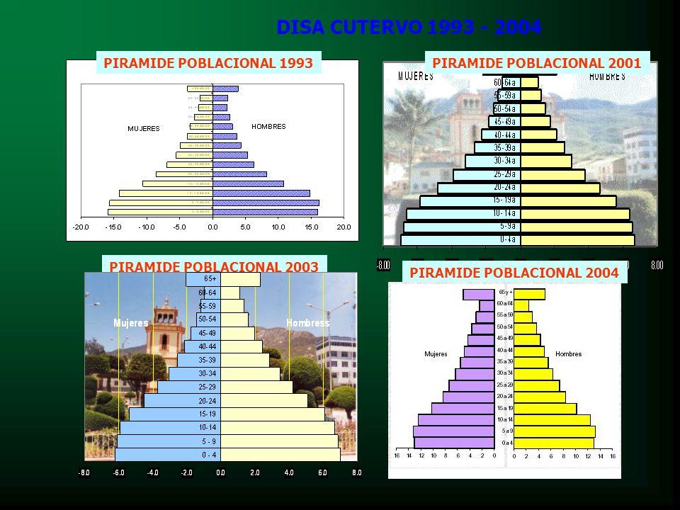 DISA CUTERVO 1993 - 2004 PIRAMIDE POBLACIONAL 1993