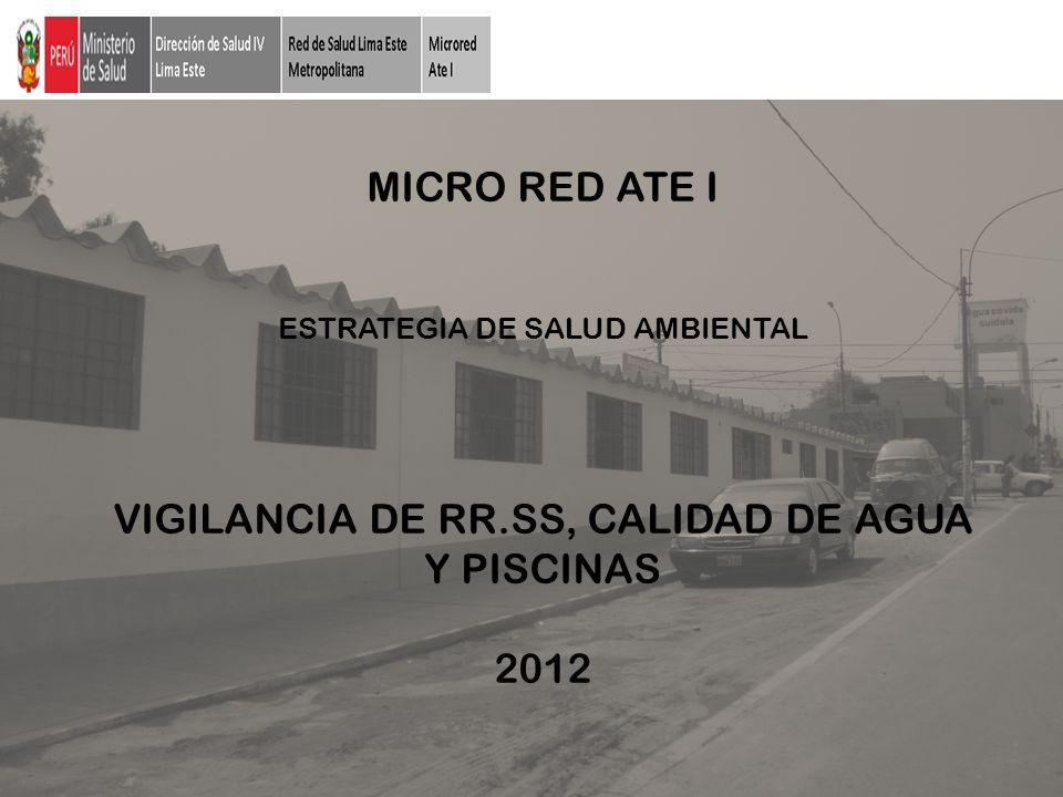 MICRO RED ATE I ESTRATEGIA DE SALUD AMBIENTAL VIGILANCIA DE RR