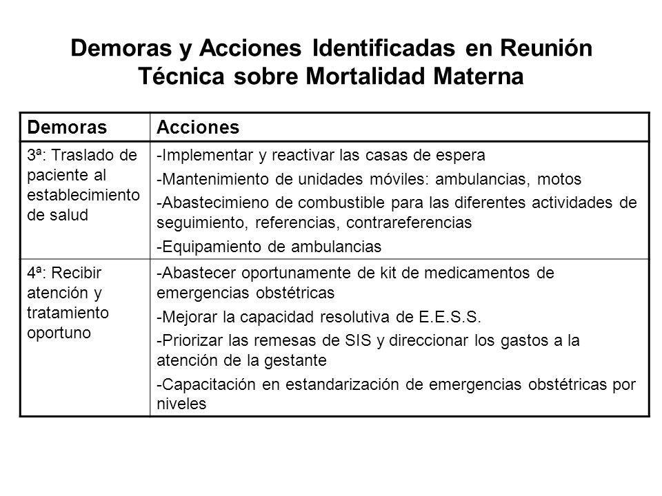 Demoras y Acciones Identificadas en Reunión Técnica sobre Mortalidad Materna