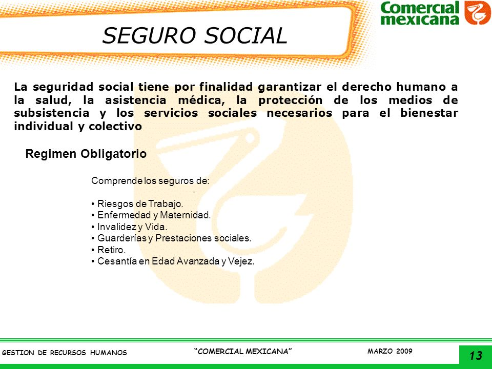 SEGURO SOCIAL Regimen Obligatorio