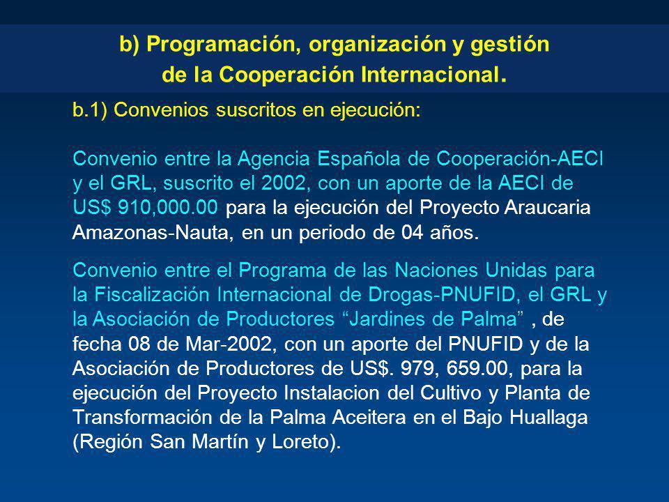 b) Programación, organización y gestión de la Cooperación Internacional.