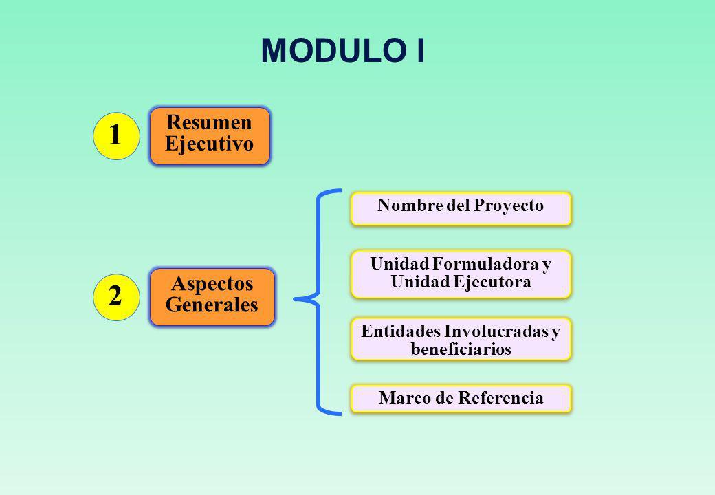 MODULO I 1 2 Resumen Ejecutivo Aspectos Generales Nombre del Proyecto