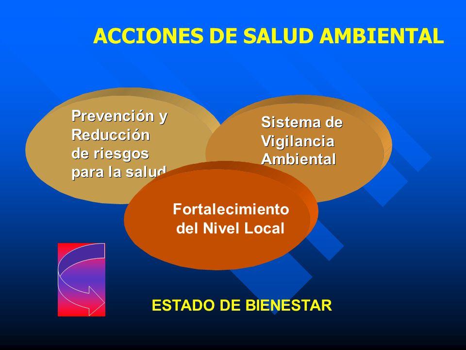 ACCIONES DE SALUD AMBIENTAL