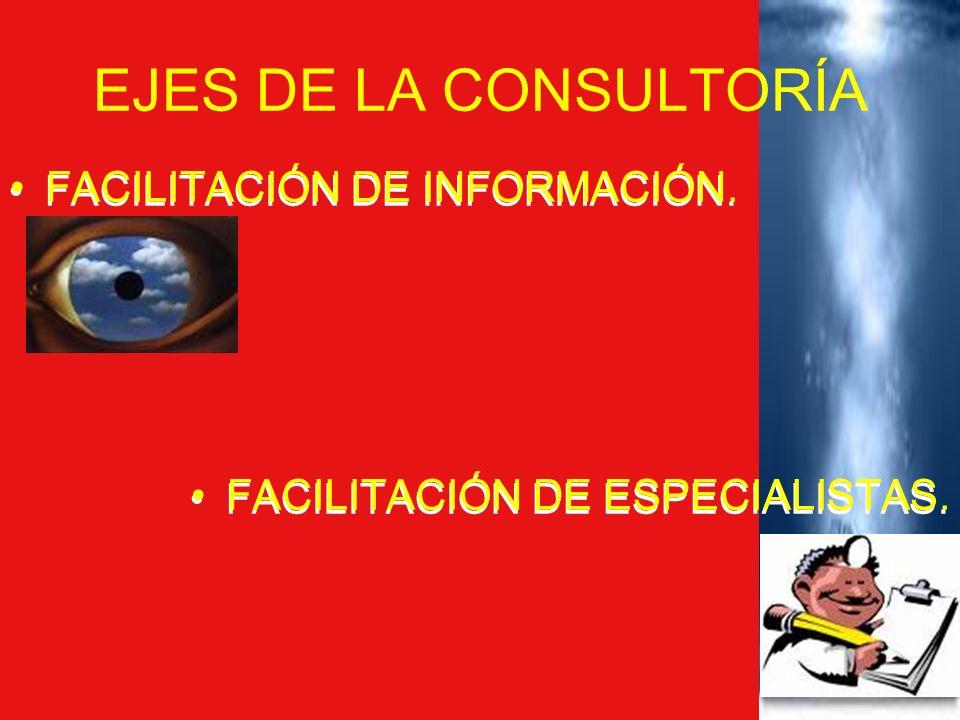 EJES DE LA CONSULTORÍA FACILITACIÓN DE INFORMACIÓN.