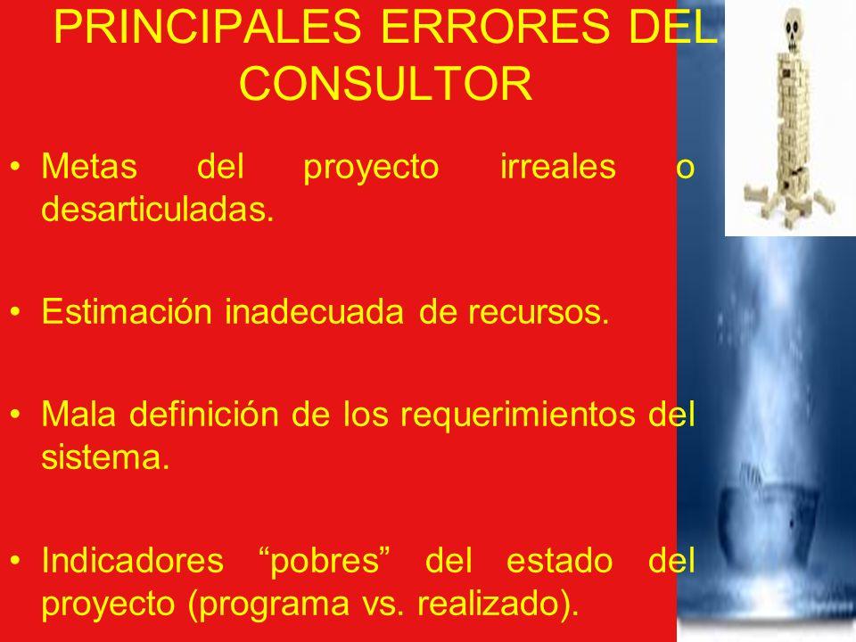 PRINCIPALES ERRORES DEL CONSULTOR