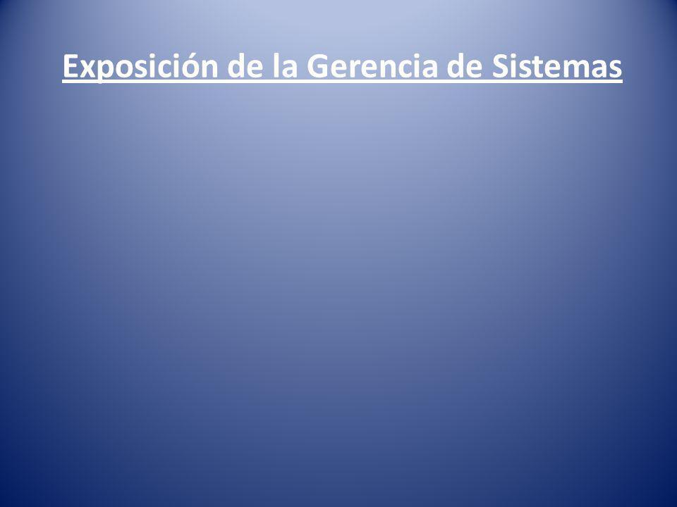 Exposición de la Gerencia de Sistemas