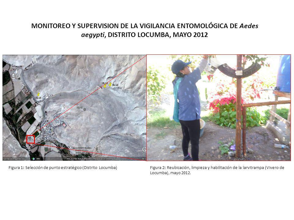MONITOREO Y SUPERVISION DE LA VIGILANCIA ENTOMOLÓGICA DE Aedes aegypti, DISTRITO LOCUMBA, MAYO 2012