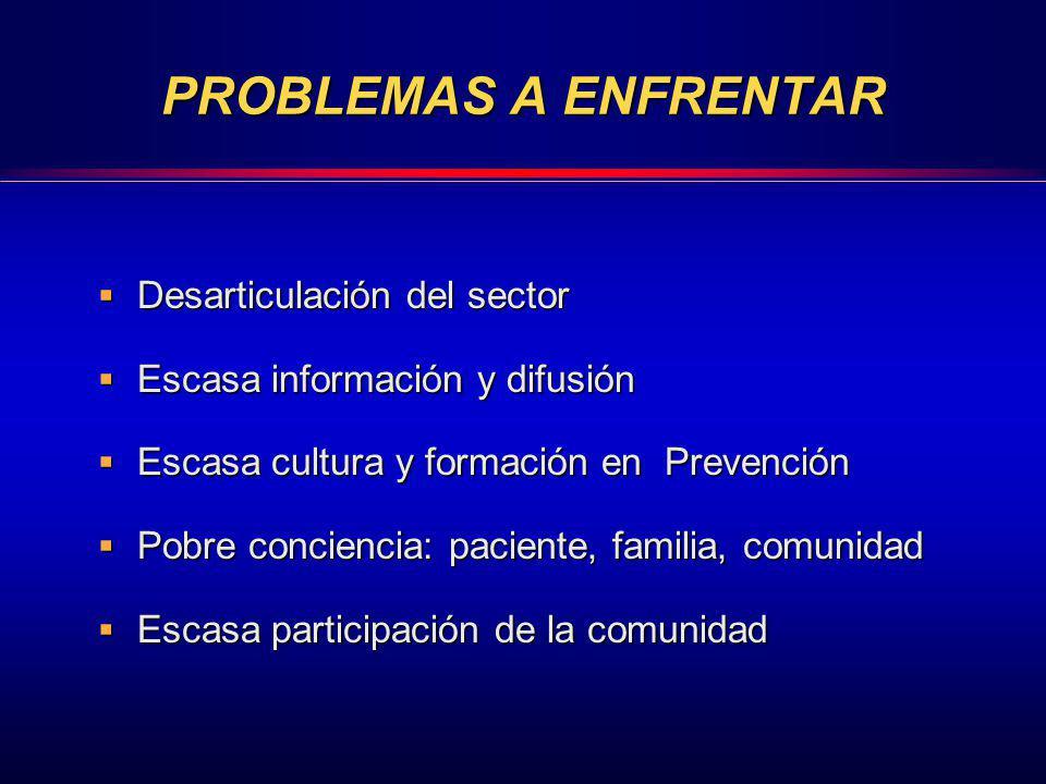 PROBLEMAS A ENFRENTAR Desarticulación del sector