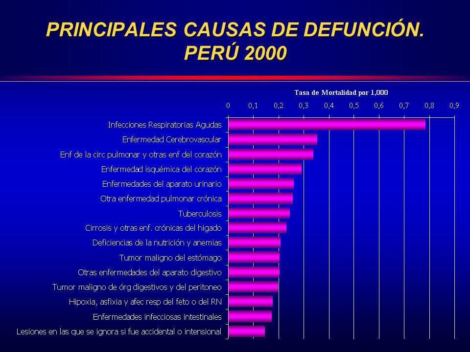 PRINCIPALES CAUSAS DE DEFUNCIÓN. PERÚ 2000