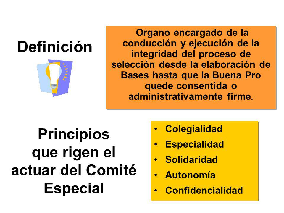 Principios que rigen el actuar del Comité Especial