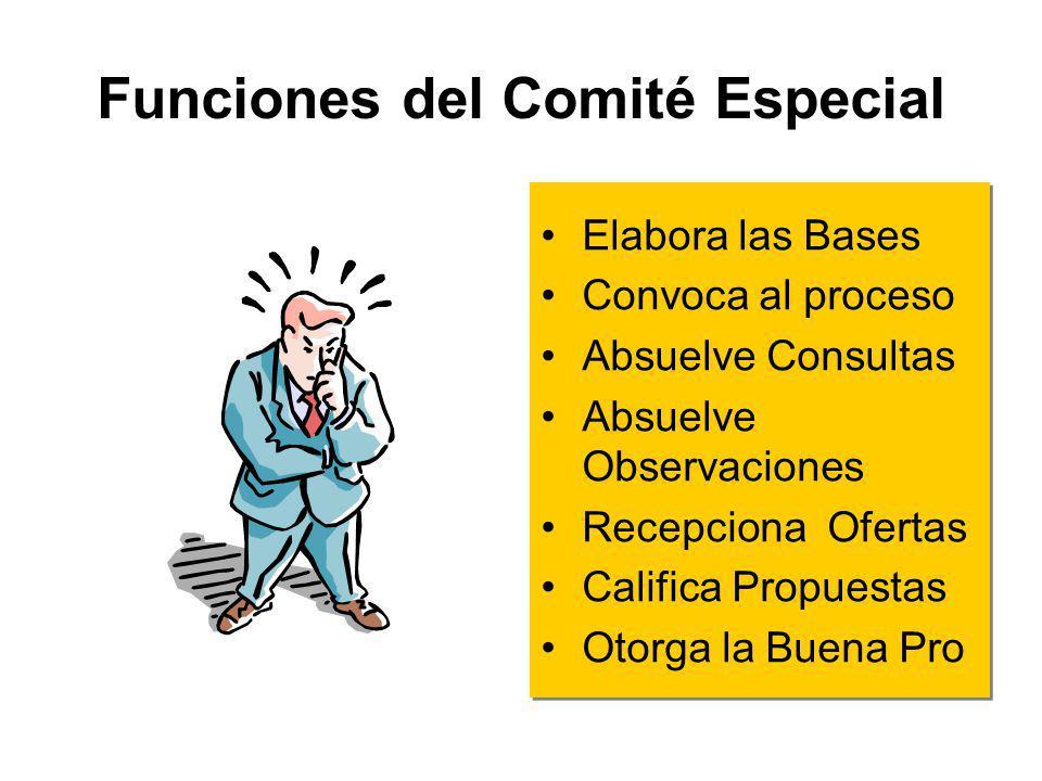 Funciones del Comité Especial