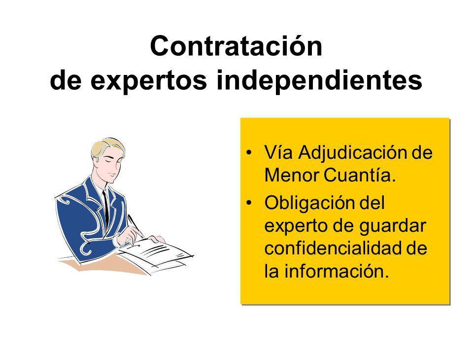 Contratación de expertos independientes