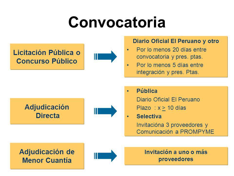 Convocatoria Licitación Pública o Concurso Público