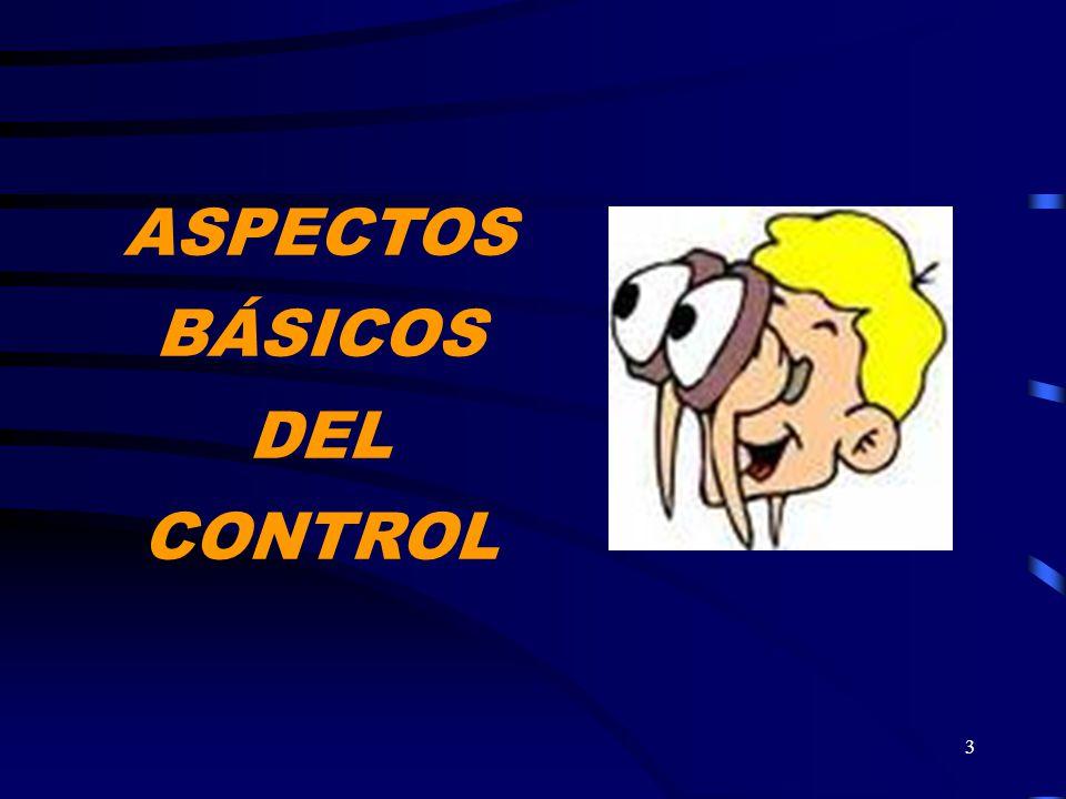 ASPECTOS BÁSICOS DEL CONTROL