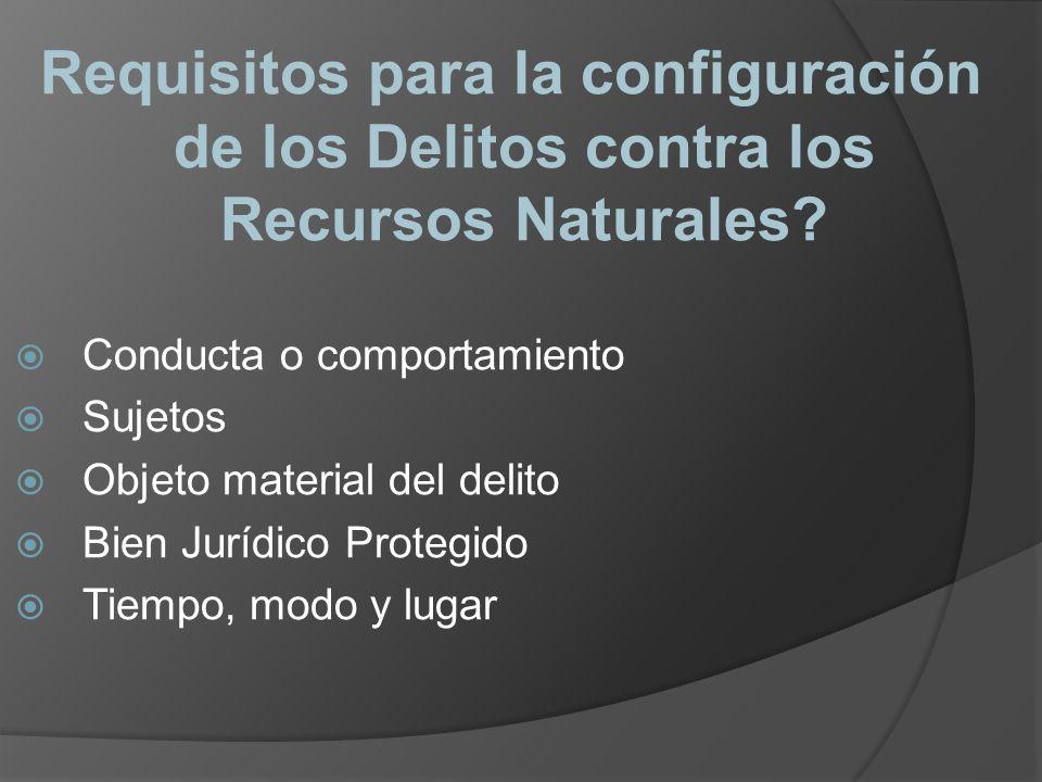 Requisitos para la configuración de los Delitos contra los Recursos Naturales