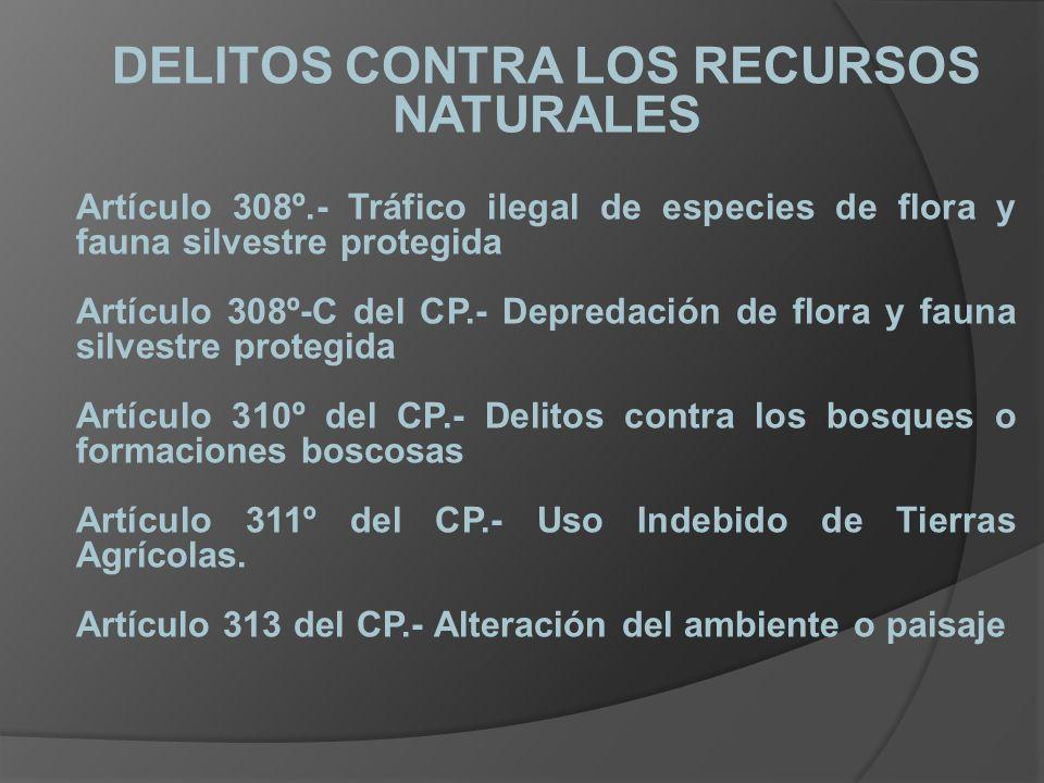 DELITOS CONTRA LOS RECURSOS NATURALES