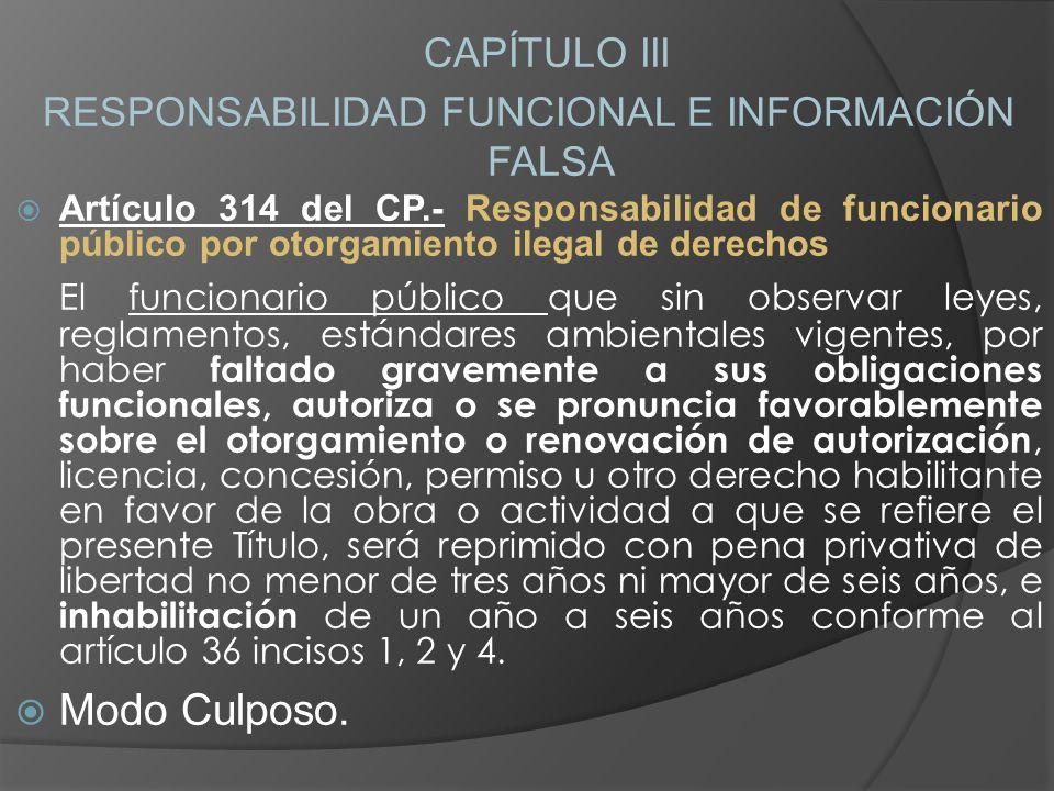 RESPONSABILIDAD FUNCIONAL E INFORMACIÓN FALSA