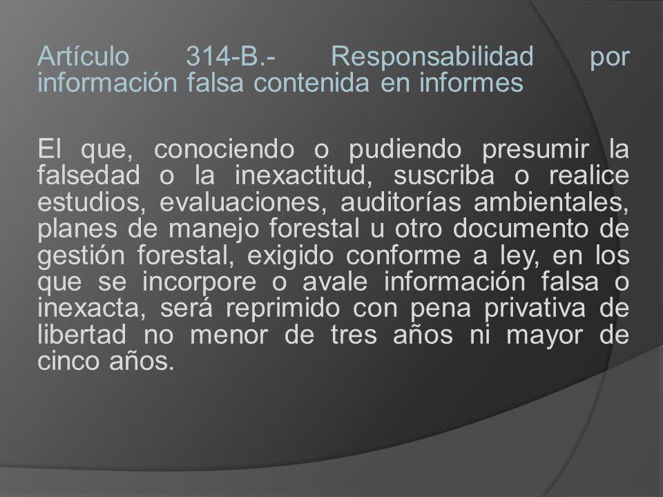 Artículo 314-B.- Responsabilidad por información falsa contenida en informes
