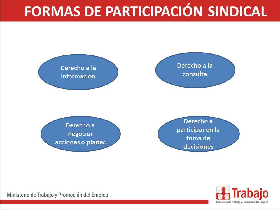 FORMAS DE PARTICIPACIÓN SINDICAL