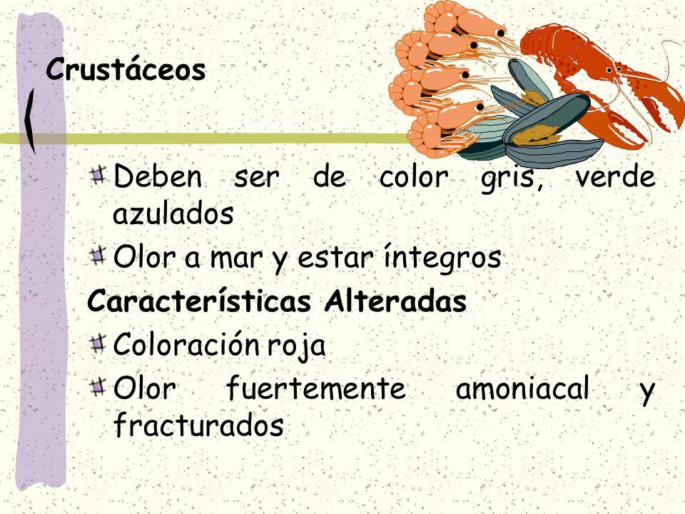 Crustáceos Deben ser de color gris, verde azulados. Olor a mar y estar íntegros. Características Alteradas.