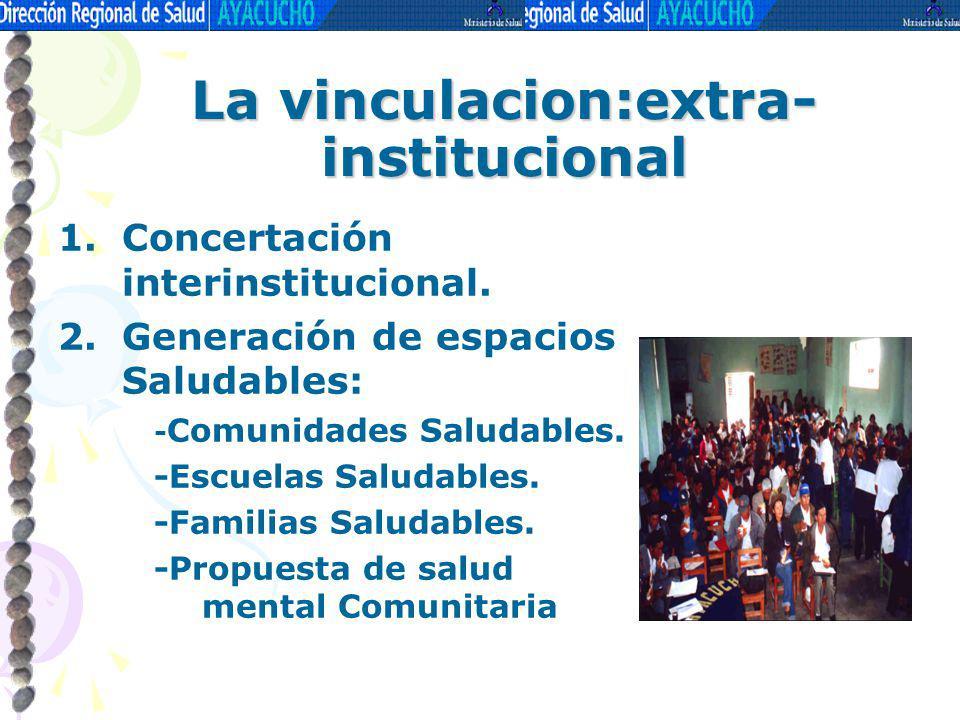 La vinculacion:extra-institucional