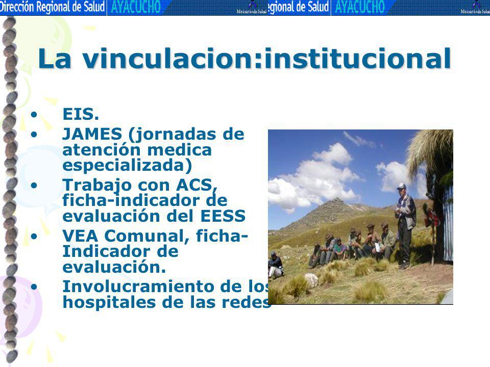 La vinculacion:institucional