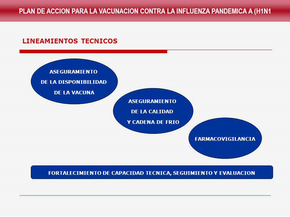FORTALECIMIENTO DE CAPACIDAD TECNICA, SEGUIMIENTO Y EVALUACION