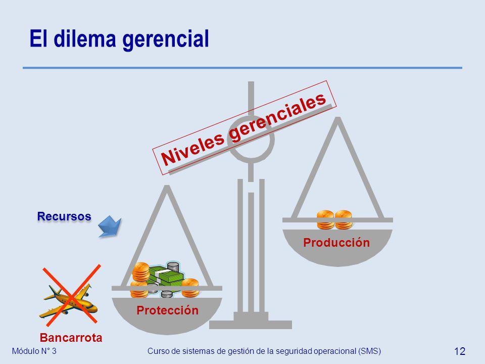 El dilema gerencial Niveles gerenciales Recursos Producción Protección