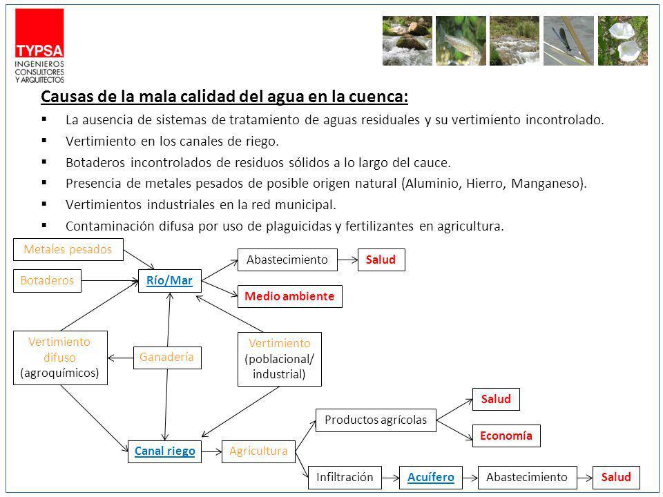 Causas de la mala calidad del agua en la cuenca: