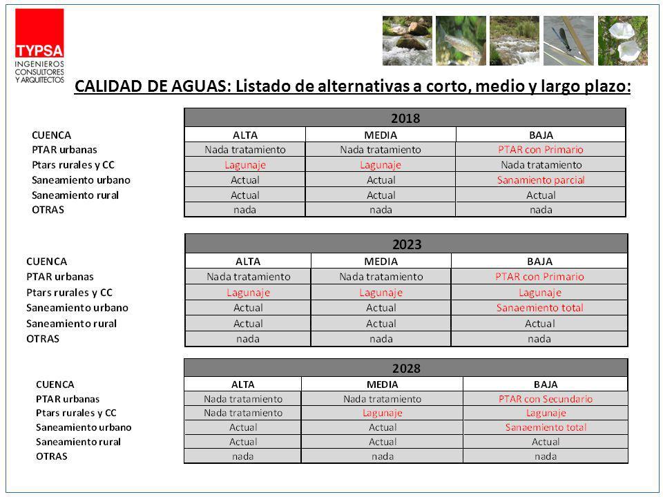CALIDAD DE AGUAS: Listado de alternativas a corto, medio y largo plazo: