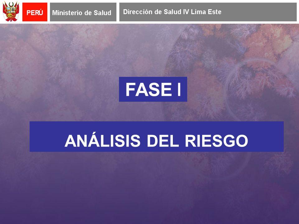 FASE I ANÁLISIS DEL RIESGO