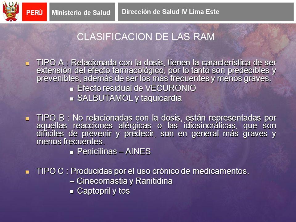 CLASIFICACION DE LAS RAM