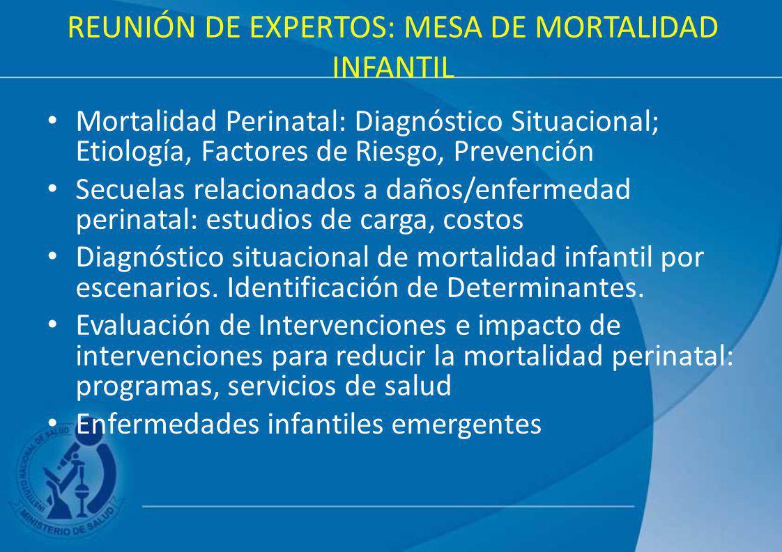 REUNIÓN DE EXPERTOS: MESA DE MORTALIDAD INFANTIL