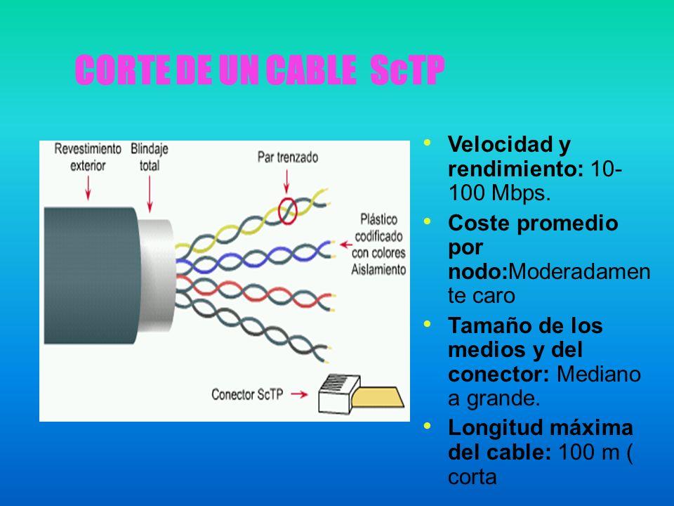 CORTE DE UN CABLE ScTP Velocidad y rendimiento: 10-100 Mbps.