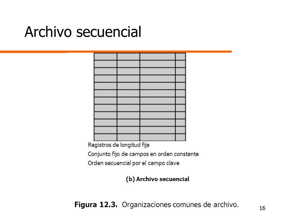 Figura 12.3. Organizaciones comunes de archivo.