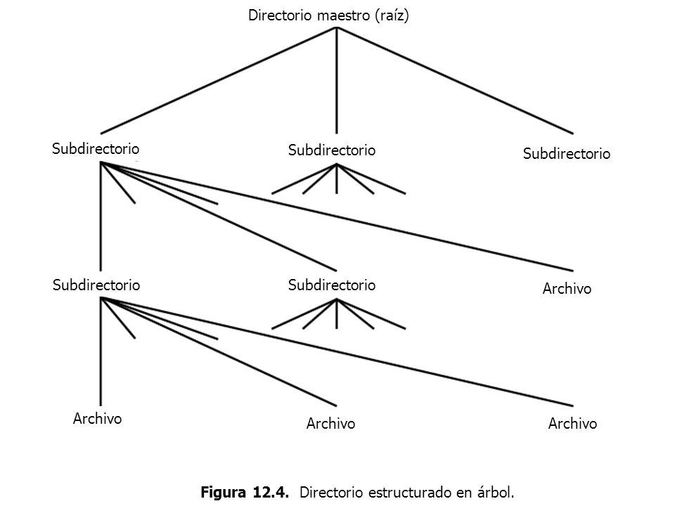 Figura 12.4. Directorio estructurado en árbol.