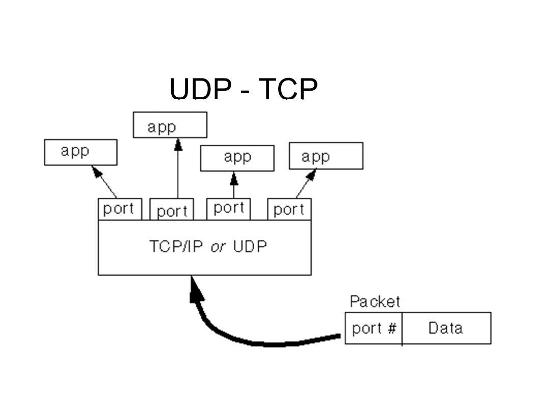 UDP - TCP
