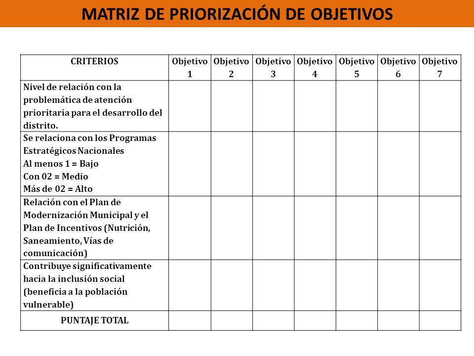 MATRIZ DE PRIORIZACIÓN DE OBJETIVOS