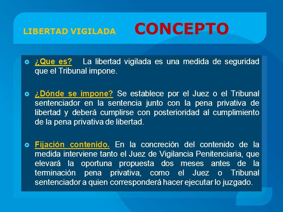 LIBERTAD VIGILADA CONCEPTO