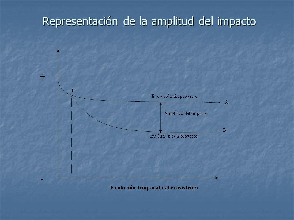Representación de la amplitud del impacto