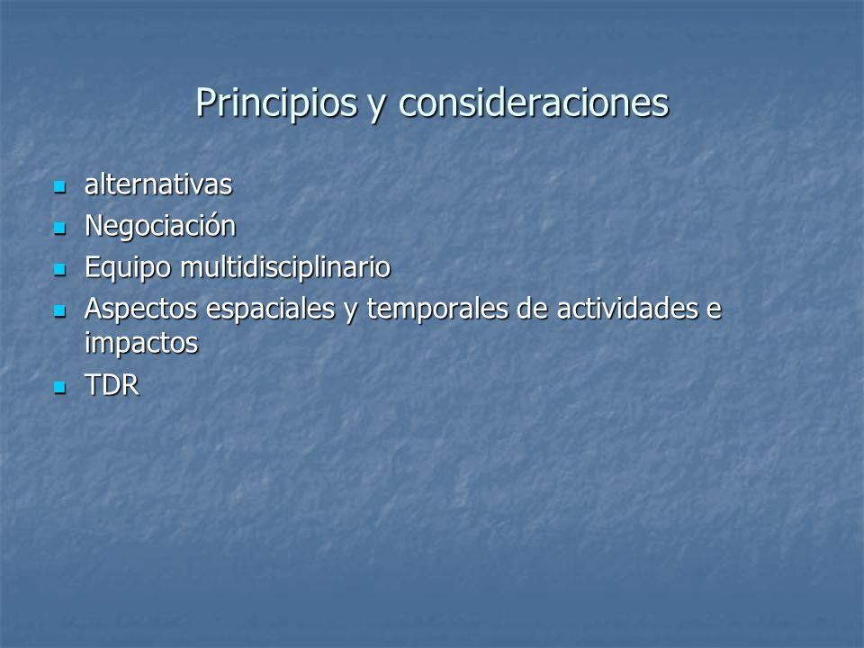 Principios y consideraciones