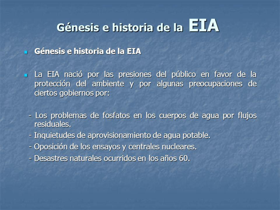 Génesis e historia de la EIA