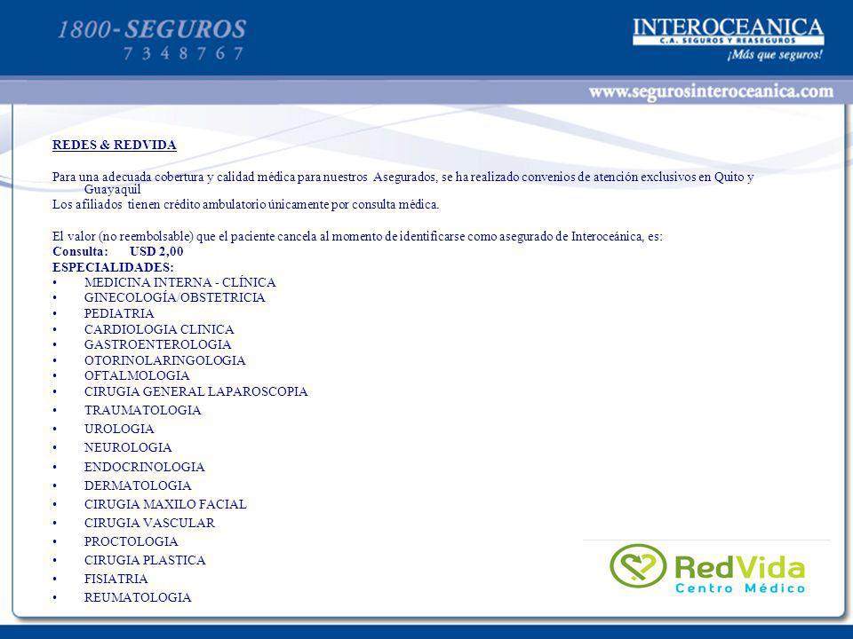PLANTILLA PARA TEXTOS 21 REDES & REDVIDA